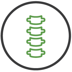 MemorialCare Icon Spine